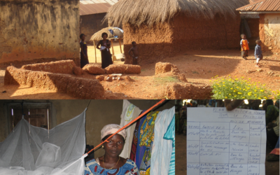 Self Assessment in the struggle against malaria in Togo and The Gambia