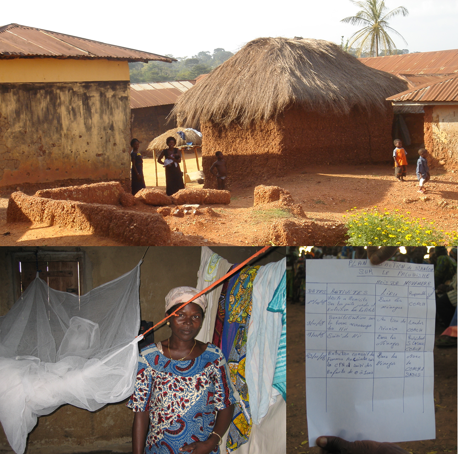 Ownership by communities using the Self Assessment in the struggle against malaria in Togo and The Gambia